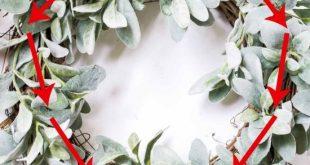 Fall Wreath Idea: Lamb's Ear & Cotton Bolls