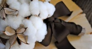 Love the cotton bouquets