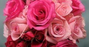 @Caitlin Murphy shades of pink rose wedding bouquet 2019 @Caitlin Murphy shade ...