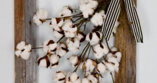 Cotton Stems in Glass Jug Farmhouse Decor