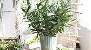 Iulove_Artificial flowers Artificial Plant Fake Leaves Foliage Grass Bush Wedding Party Home ...