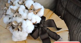 cotton bouquet with burrs had to post this since I was born in Mississippi! 201...